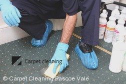 Carpet Cleaning Pascoe Vale 3044
