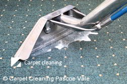 Rug Cleaning Pascoe Vale