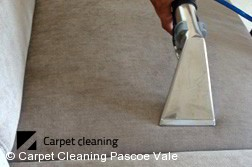 Pascoe Vale 3044 Sofa Cleaners