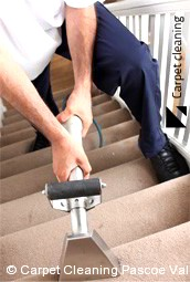 Pascoe Vale Carpet Cleaners 3044