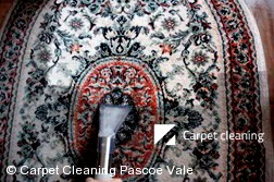 Pascoe Vale 3044 Rug Cleaners