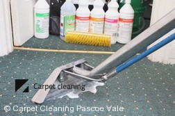 Pascoe Vale 3044 Steam Carpet Cleaning Services